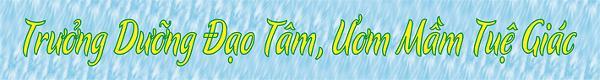Banner - Vietnamese -khoa an cu ky 16