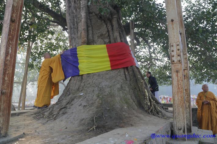 Day 11_Tinh Xa Ky Vien (176)