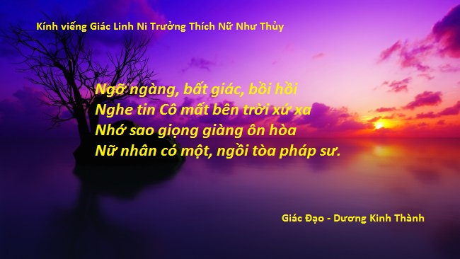 Thich Nu Nhu Thuy