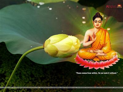 Buddha Wallpaper1360